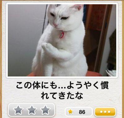 20121208_10_25_04