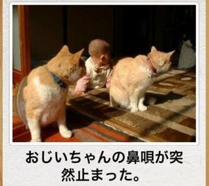 20121208_10_29_02