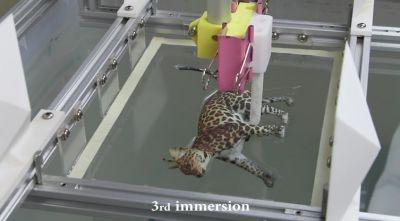 Hydroprinting05