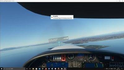 Flightsim05